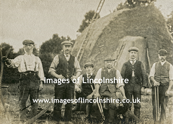 Cleethorpes_Area_Farm_Workers
