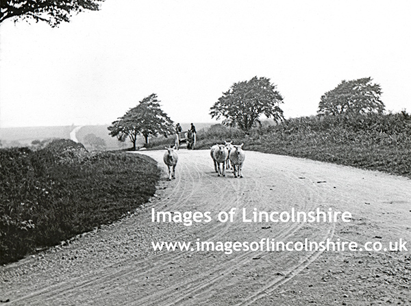 The_Louth_to_Somersby_Road_1903